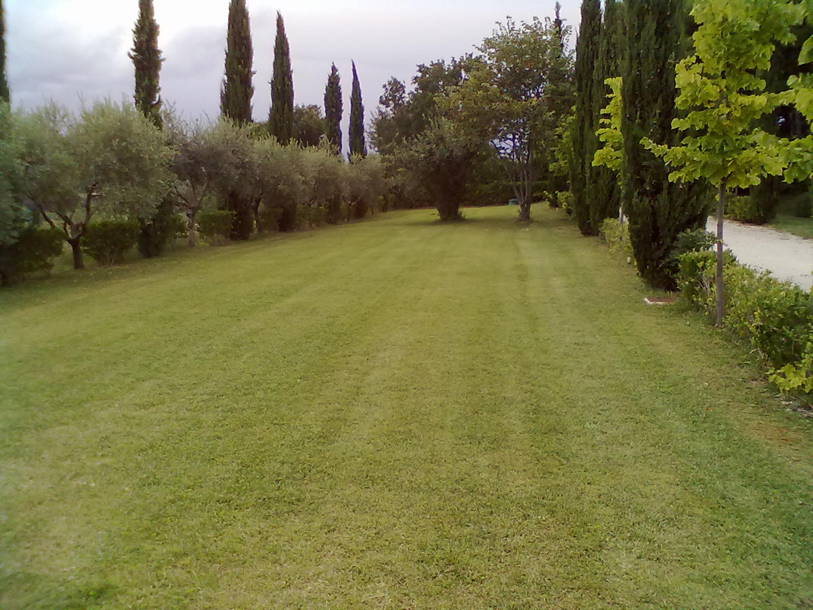 giardinaggio privato 2